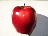 "Malus domestica ""Red Delicious"""