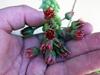 Sedum morganianum bloom