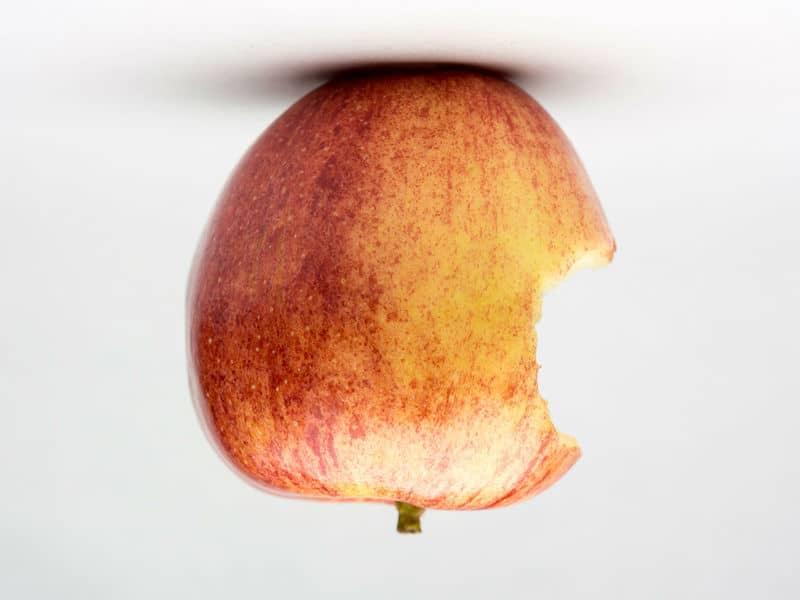 Apple prevé la primera baja de ventas del iPhone