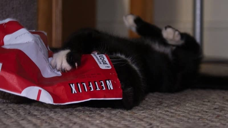 Netflix ya cuenta con más de 80 millones de abonados