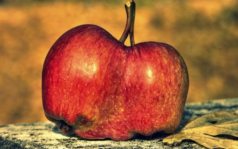 ¿Comienza la caída del éxito de Apple?