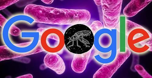 Google tiene por objetivo combatir el virus del Zika