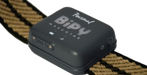 Bipy Pets, the new pet collar with GPS and 4G Personal