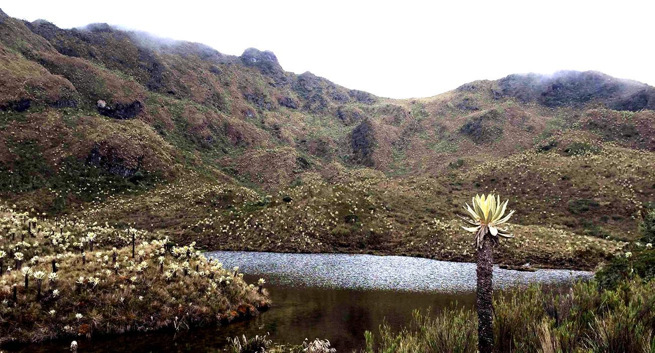 Las Hermosas: de antigua fortaleza de las Farc a potente reserva natural