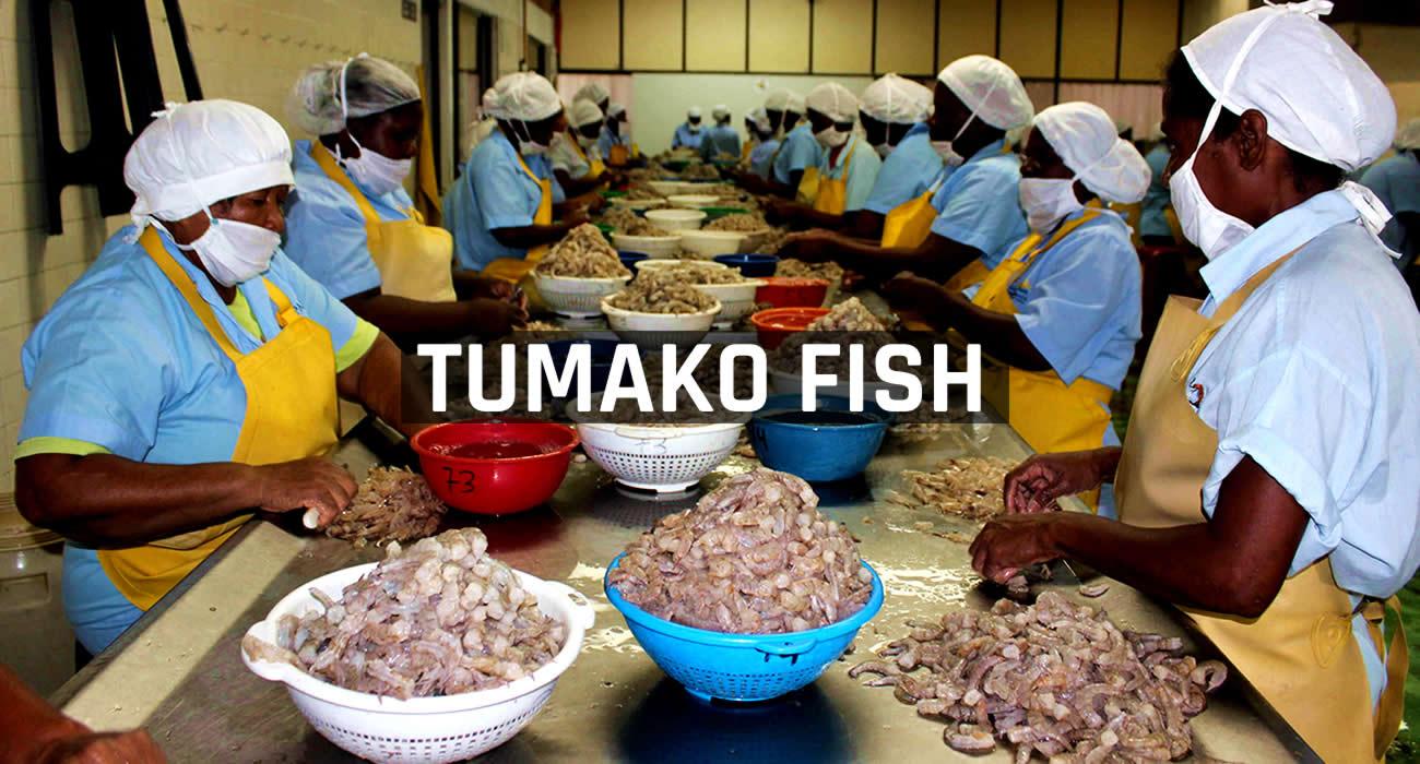 Las madres que revivieron la industria del camarón en Tumaco
