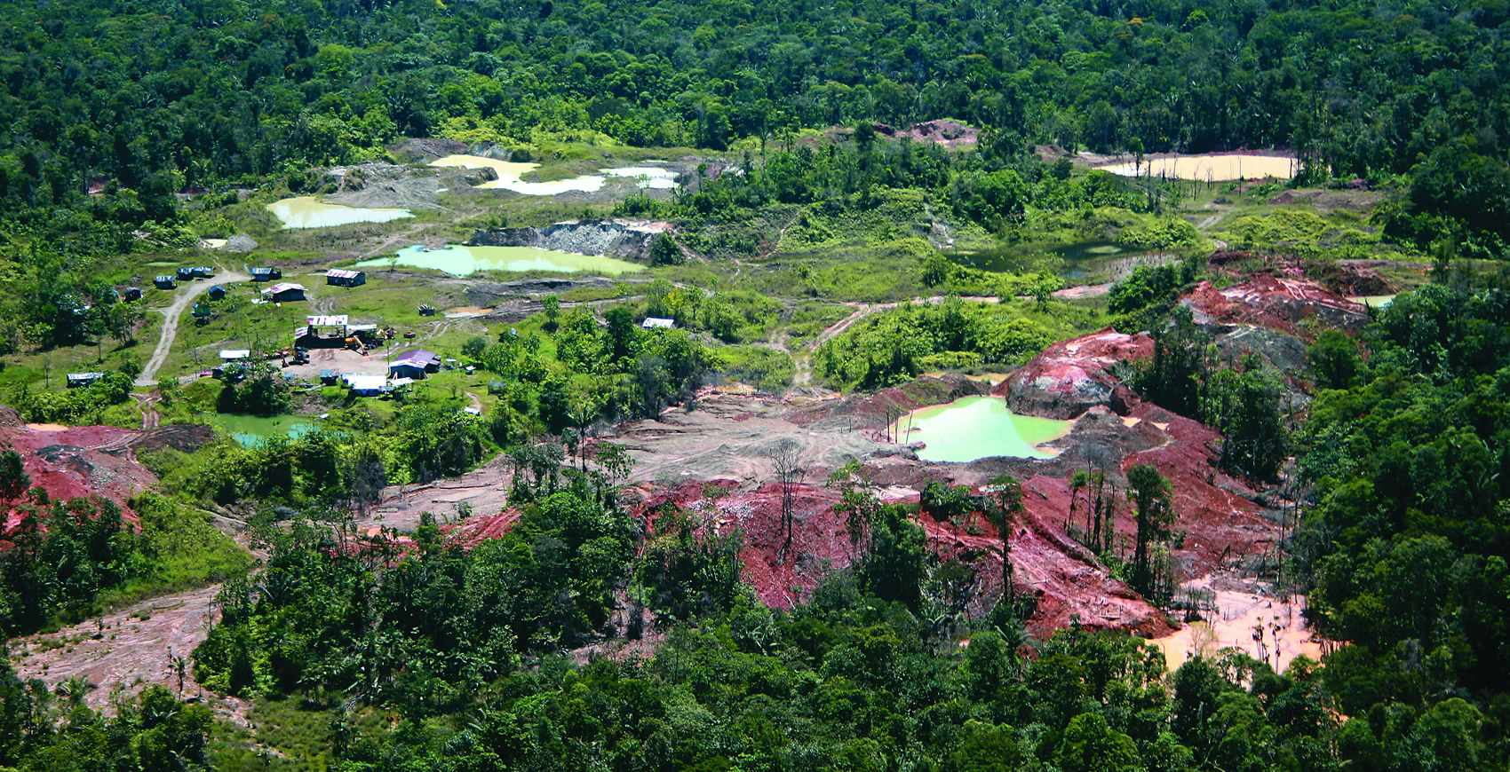 Cómo la deforestación en Colombia va más allá de arrasar bosques y selvas