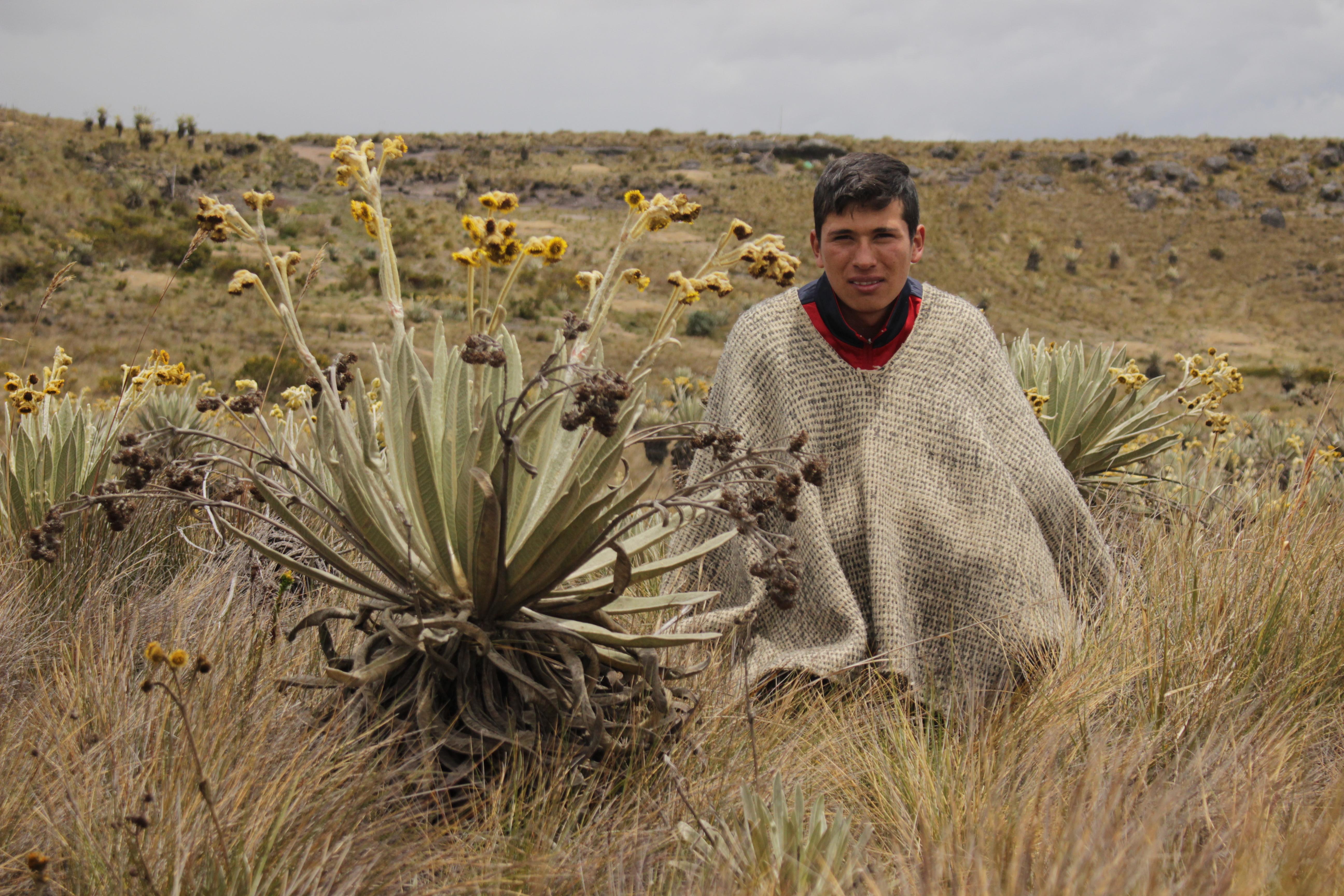 Sumapaz y el reto de proteger el páramo más grande del mundo