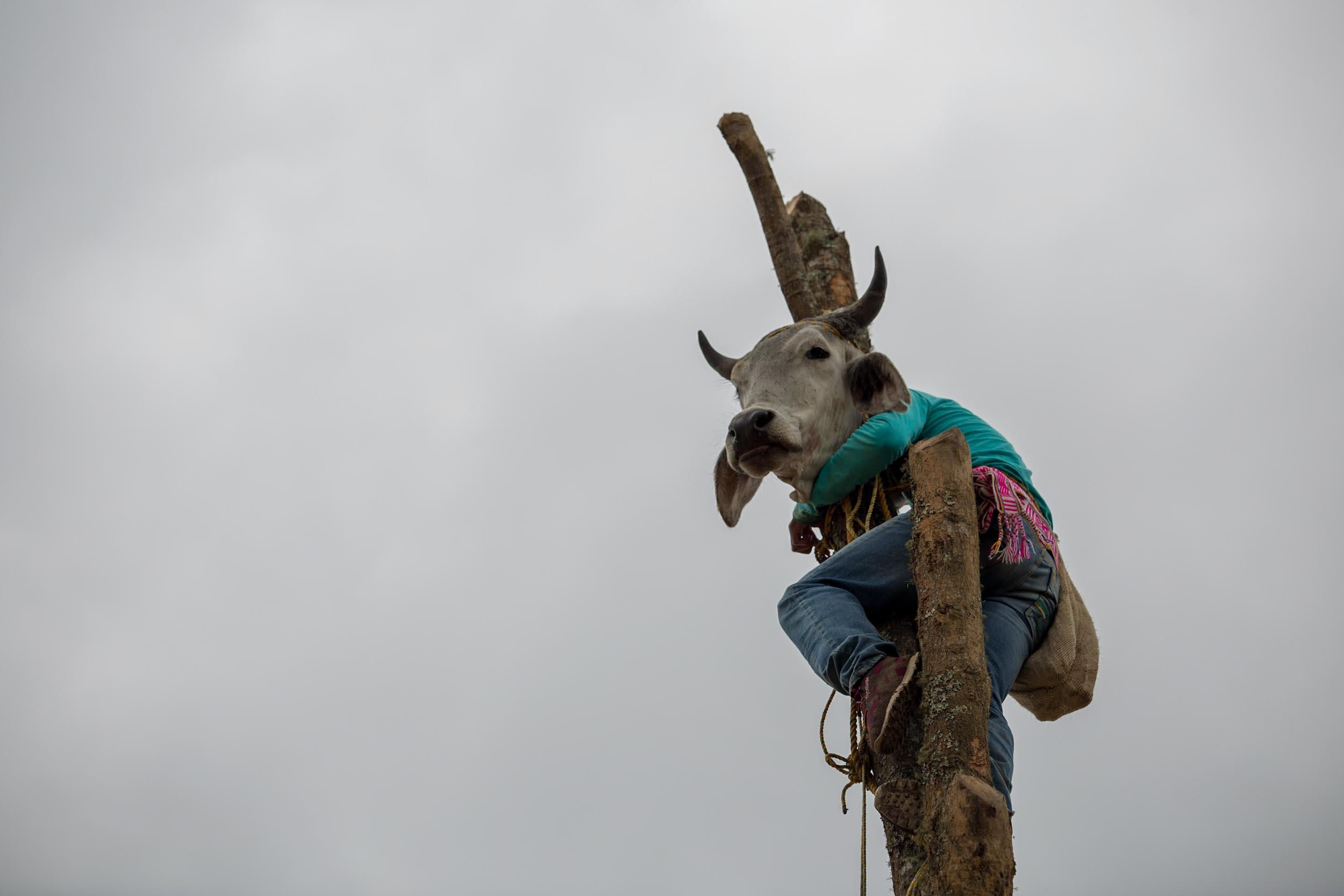 La lucha del pueblo Nasa por la liberación de sus tierras