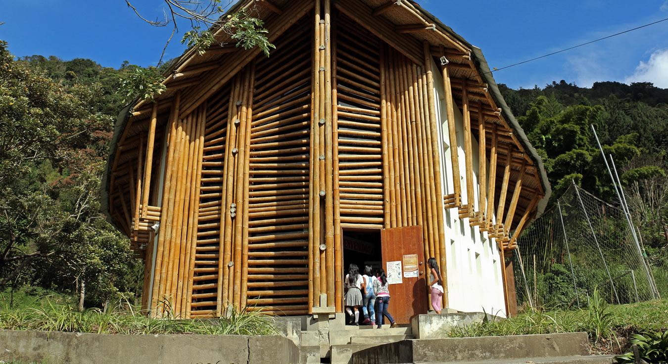 Desde una vereda en el Cauca: así es la mejor biblioteca de Colombia