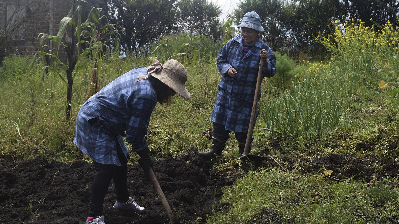 En Latinoamérica sí hay agricultura eficiente: es orgánica y no extensiva