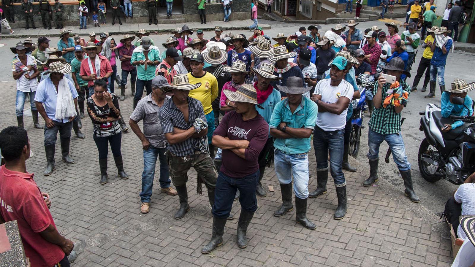 Entre el Ejército y los grupos armados: la encrucijada de los cocaleros en Ituango
