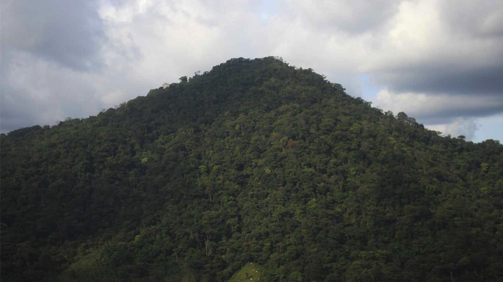 Petróleo y deforestación, las amenazas que enfrenta La Macarena