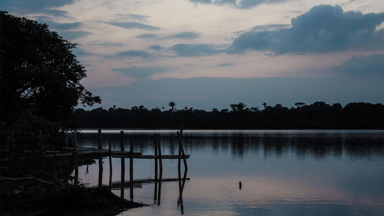 Una mañana buscando delfines en el río Ariari