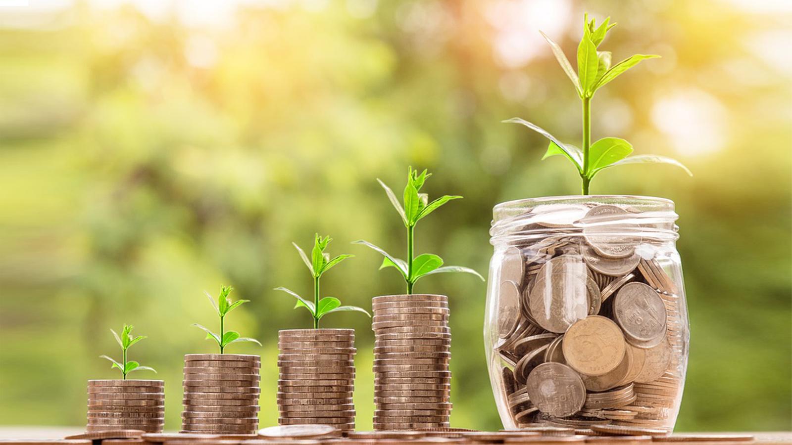 ¿Cómo acercar el sistema financiero a las regionesmás apartadas?