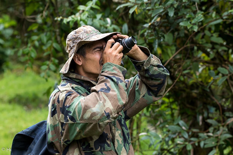 El sur del Tolima, otra potencia descubierta para el avistamiento de aves