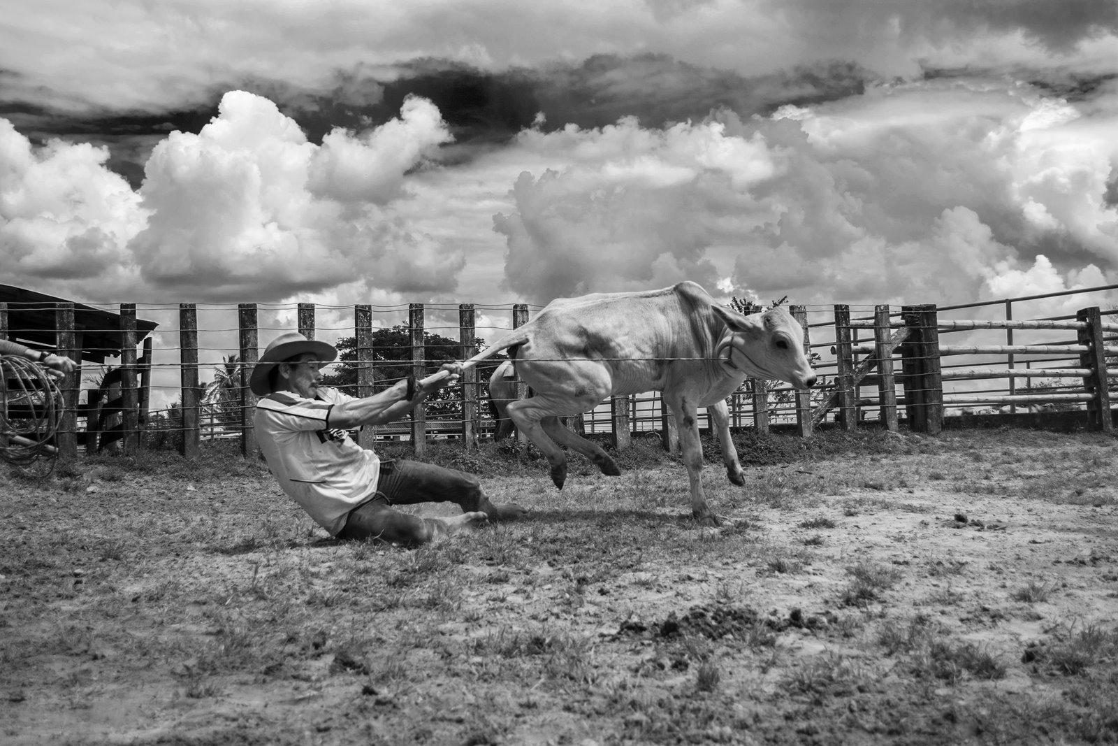 «No me llames cowboy»: un día con los llaneros del Casanare