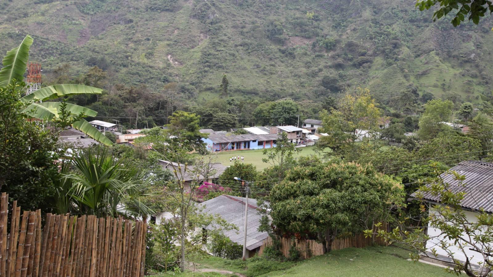 ¿Qué hay detrás de la guerra entre Pelusos y la disidencia de las Farc en el Cauca?