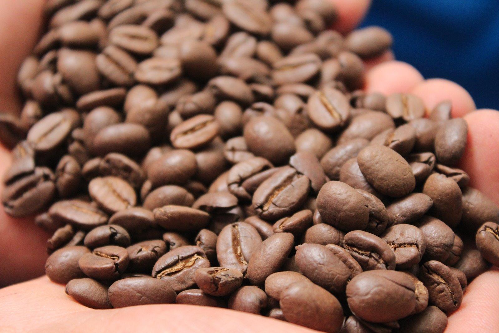 Con perdón se cosecha mejor café