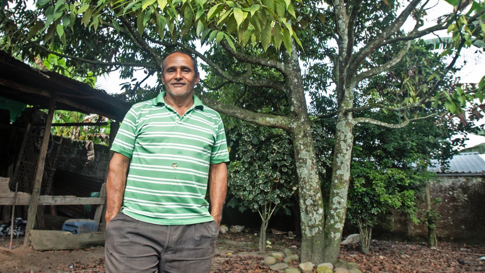 El canelo de los andaquíes, un árbol ancestral que se resiste a desaparecer