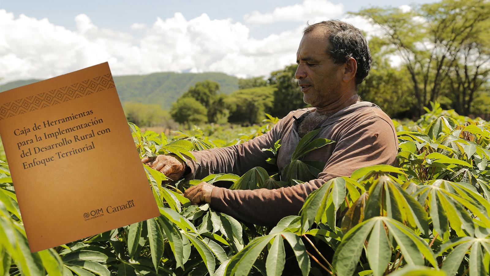 En Meta presentaron la 'biblia' del desarrollo rural
