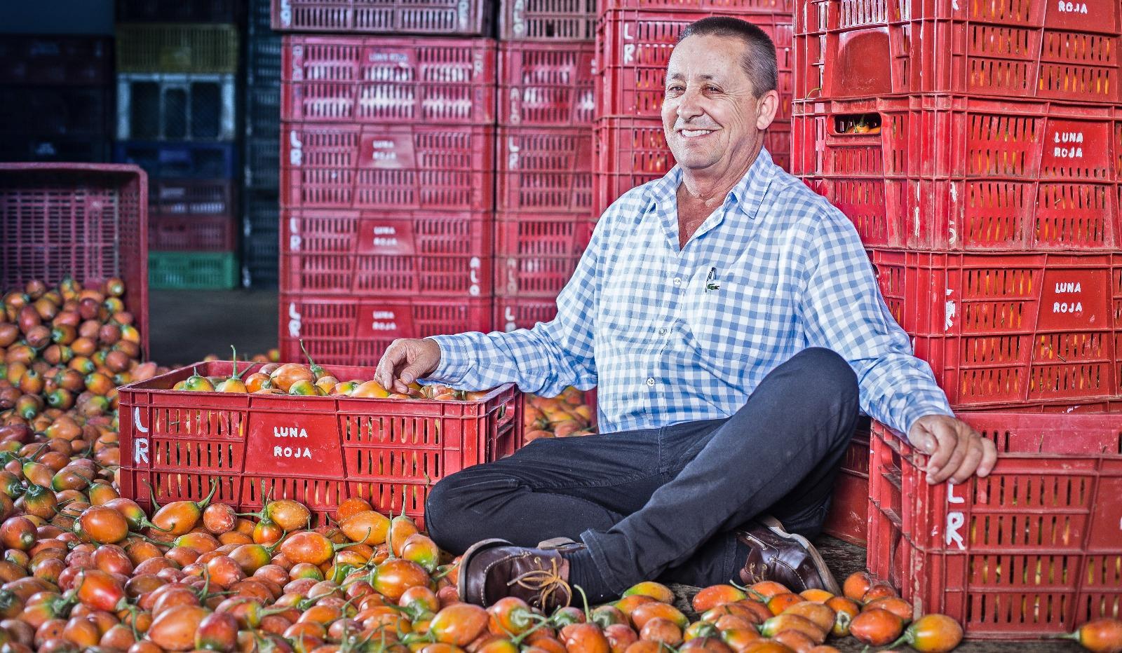 la-historia-de-antonio-lopera-el-mayor-productor-de-tomate-de-arbol-en-colombia