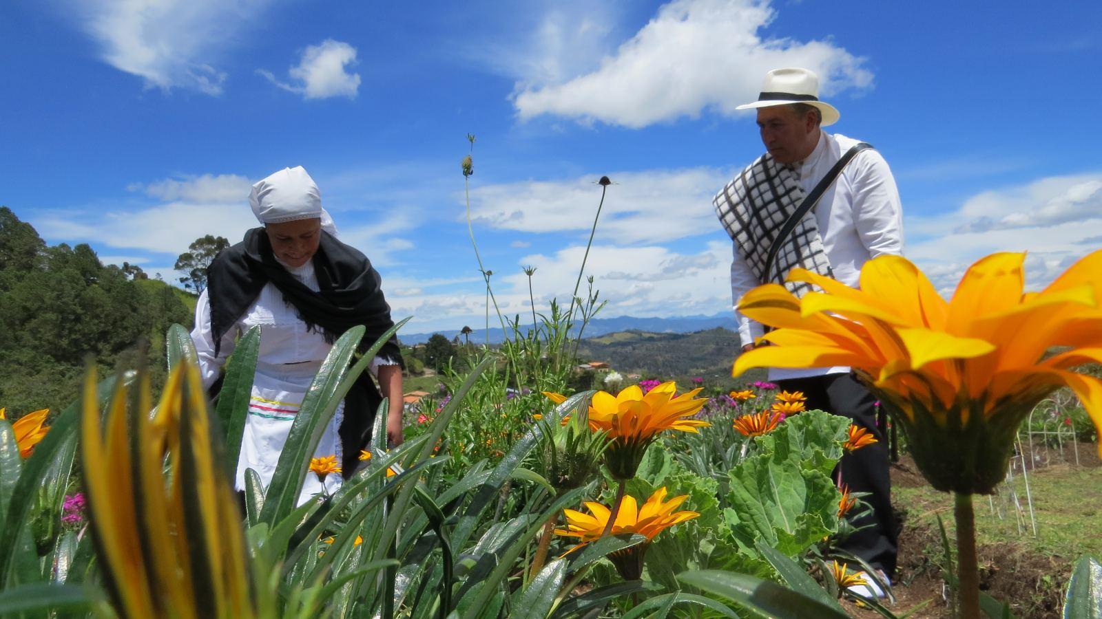 Medellín, la casa de las flores