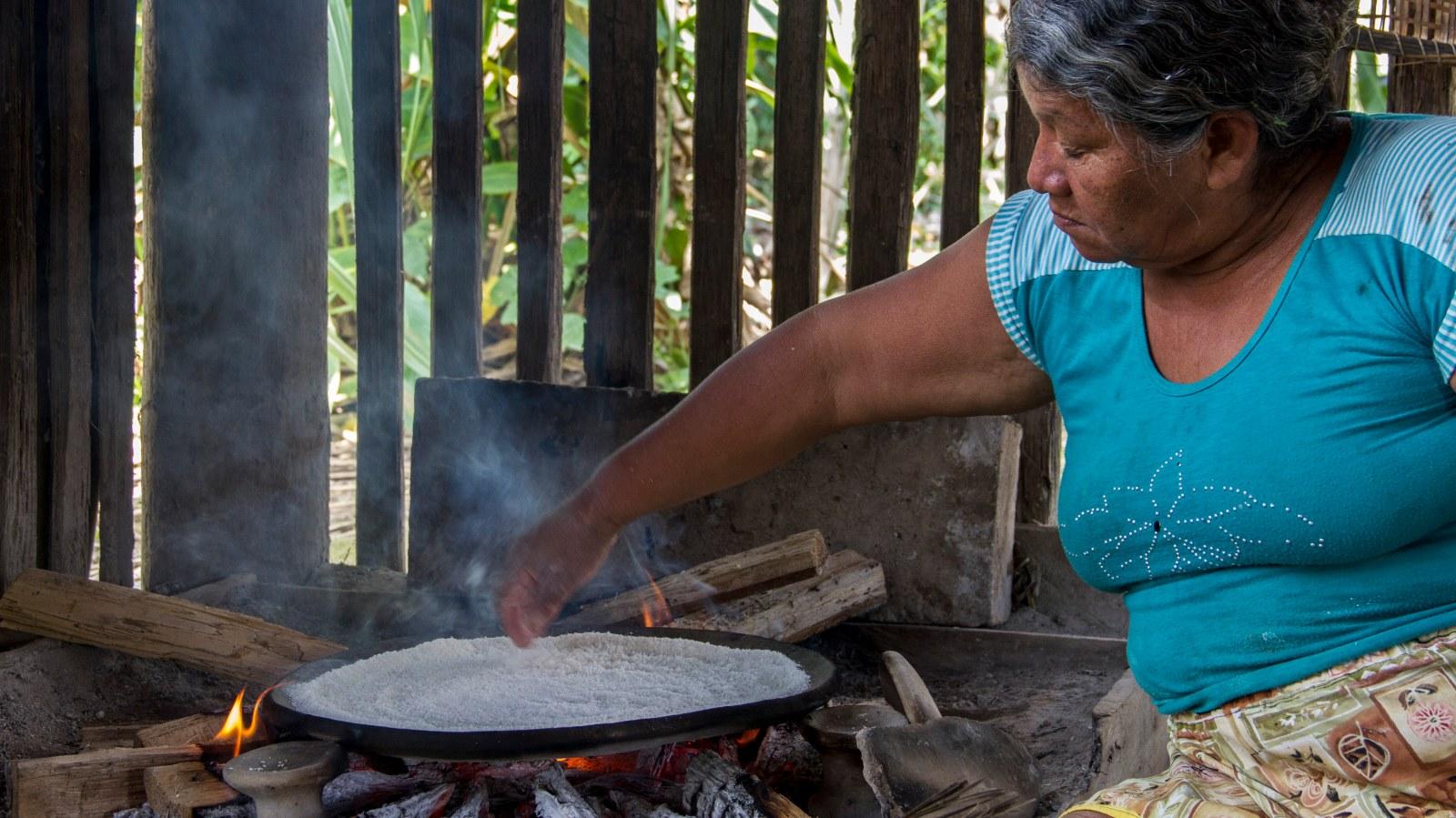 Pueblos indígenas: salvaguardas de los ecosistemas y del manejo sostenible de los recursos