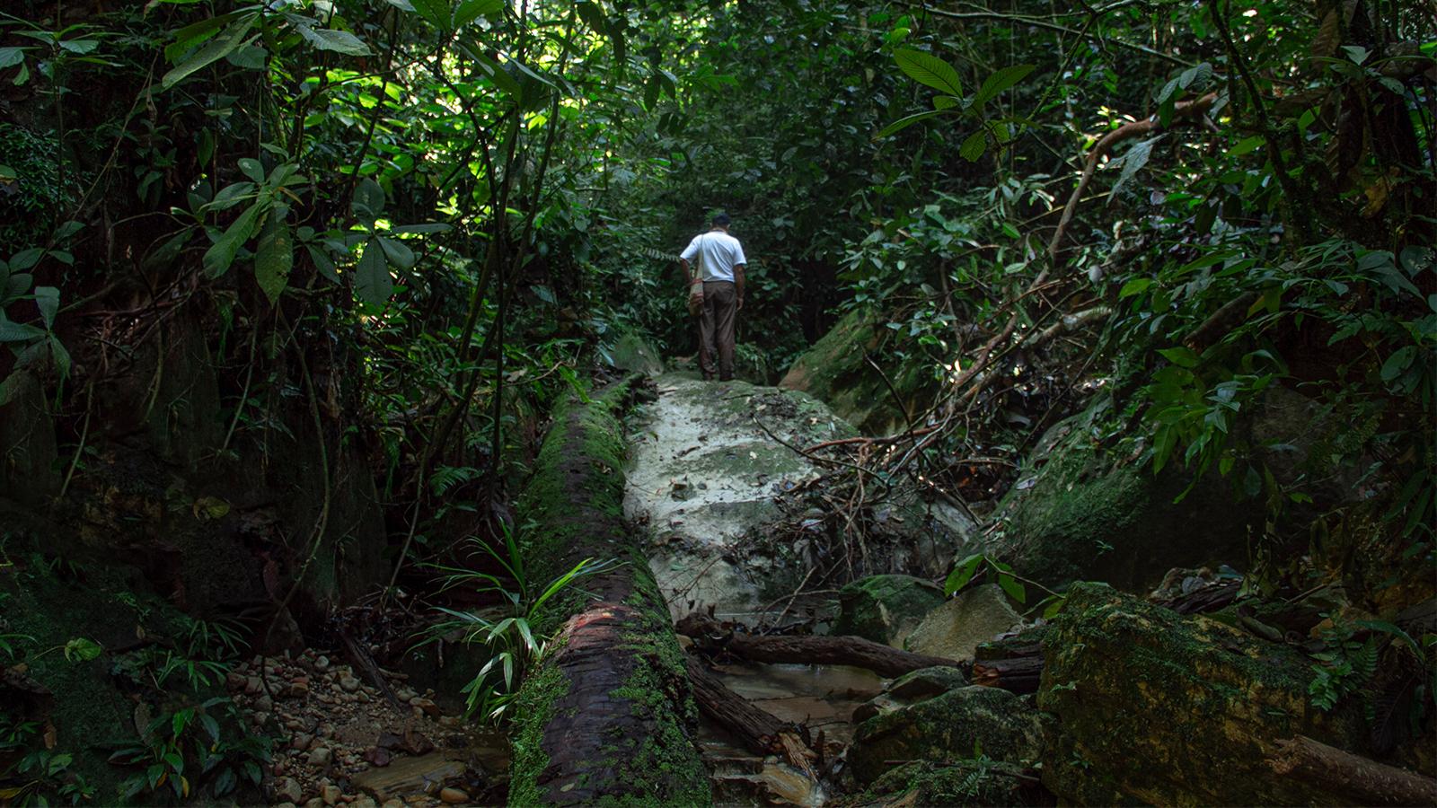 Pedir permiso para entrar a uno de los rincones donde comienza la Amazonia