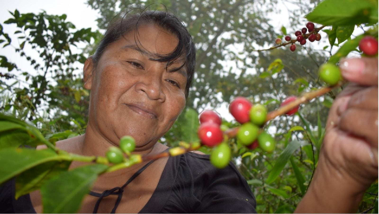 historias//historias-de-mujeres-indigenas-maria-cecilia-valencia-mujer-que-lidero-la-primera-insurreccion-indigena-