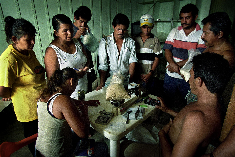Bitácora de la coca: fotografías de una guerra perdida