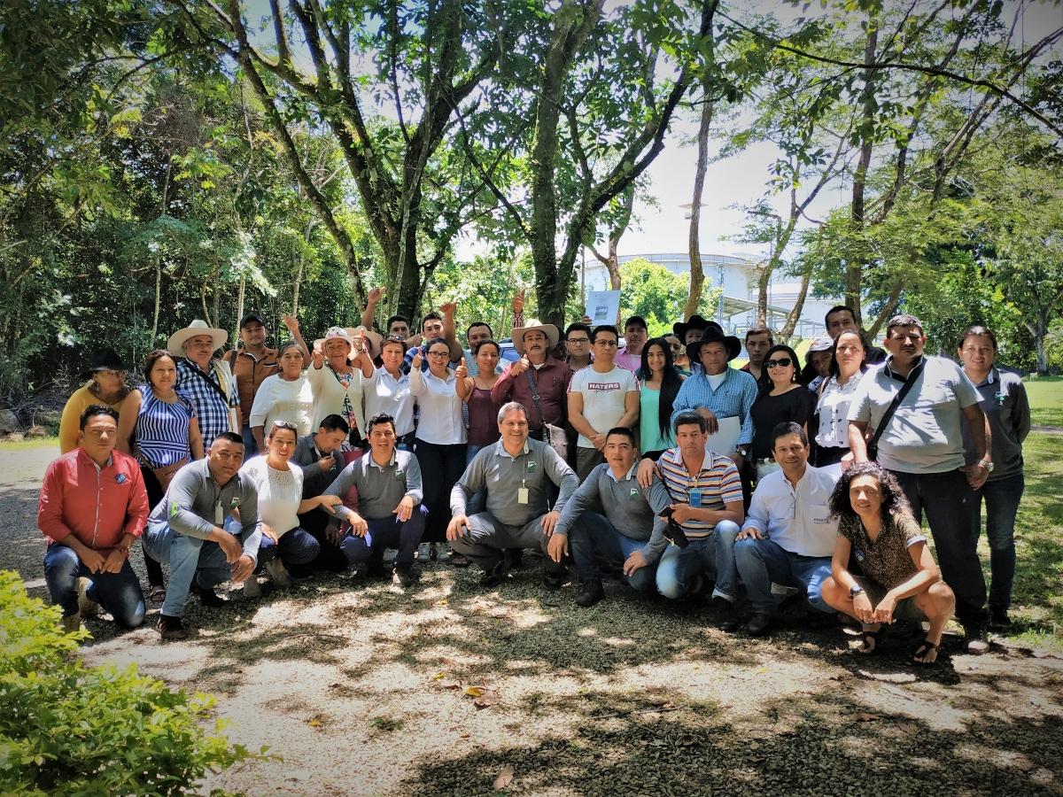La apuesta de 30 ganaderos de Yopal para salvar los bosques