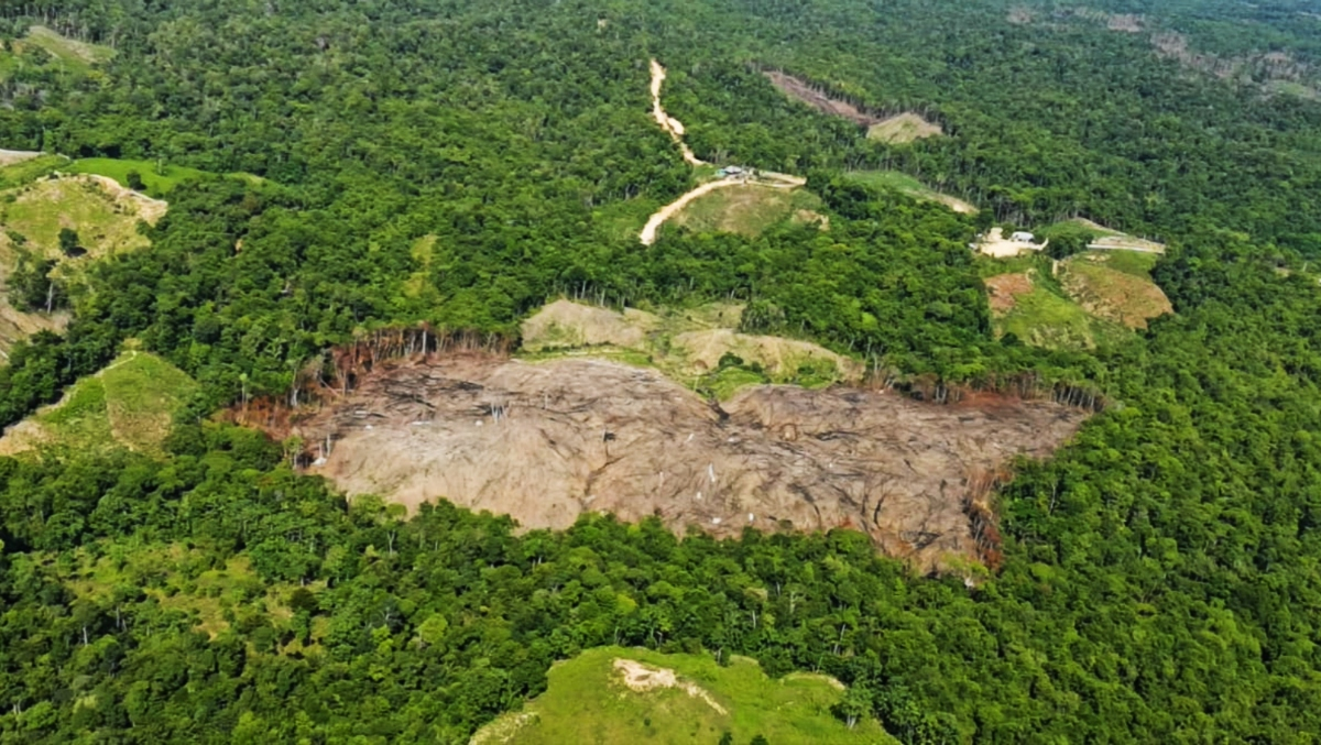 Ecocidio en El Catatumbo