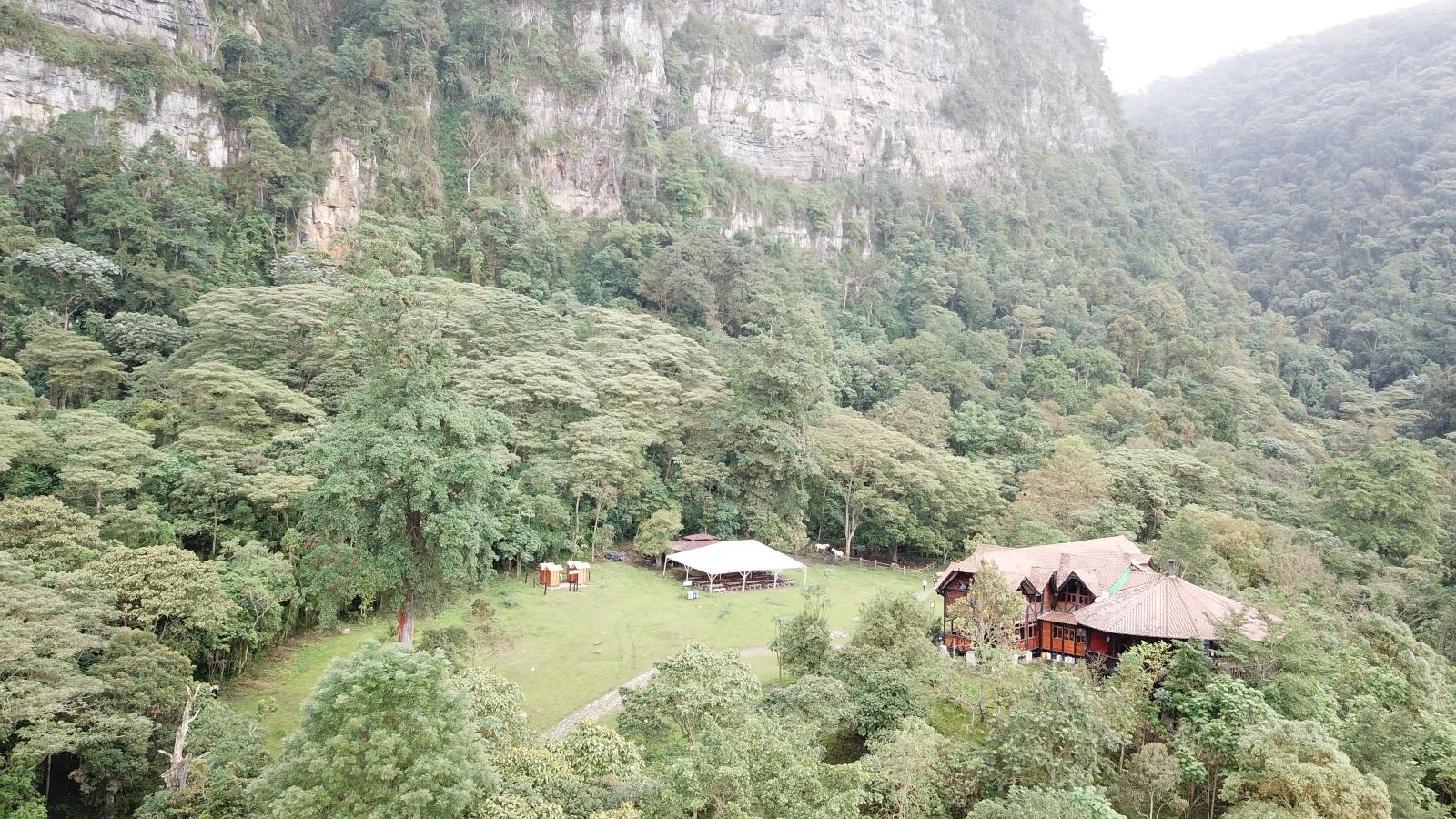 SOS: Parque Chicaque busca manos amigas para sembrar más de 1.000 árboles nativos