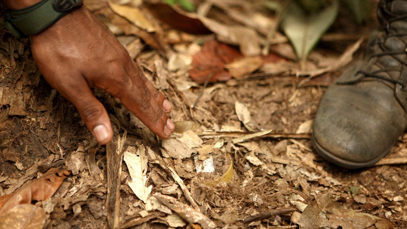 historias//colombia-registro-181-victimas-de-artefactos-explosivos-en-el-primer-semestre-del-2020