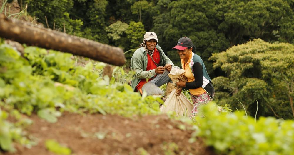 El triste panorama del hambre en Latinoamérica