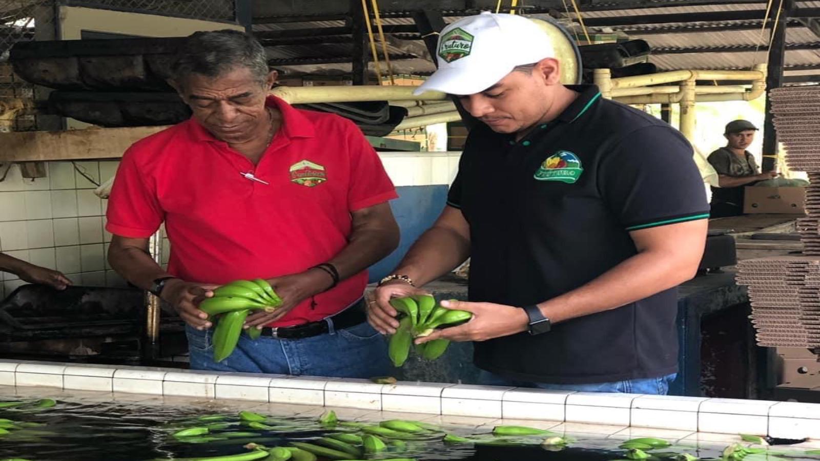 La familia que llevó el plátano de Urabá a Shanghai