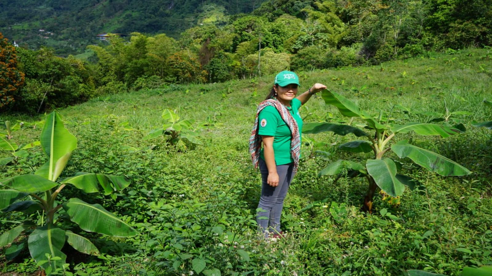 La apuesta ecológica de 120 fincas de Boyacá