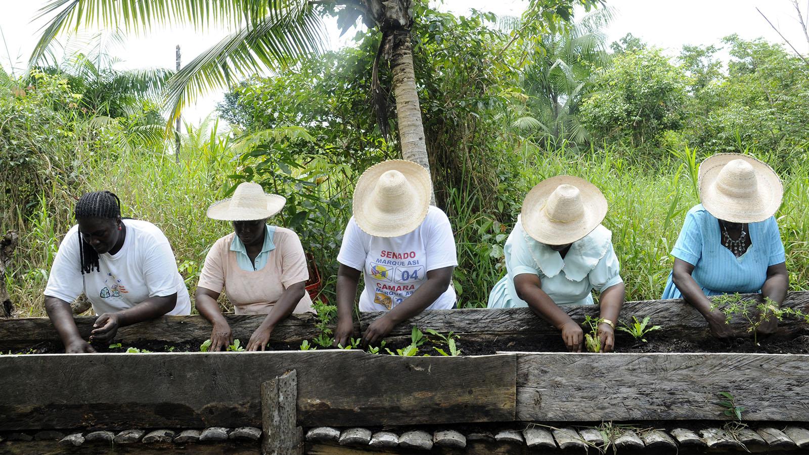 La mujer que rescata el oficio ancestral de sembrar en las azoteas