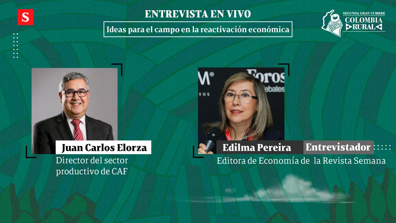 Siga la entrevista en vivo 'Ideas para el campo en la reactivación económica'