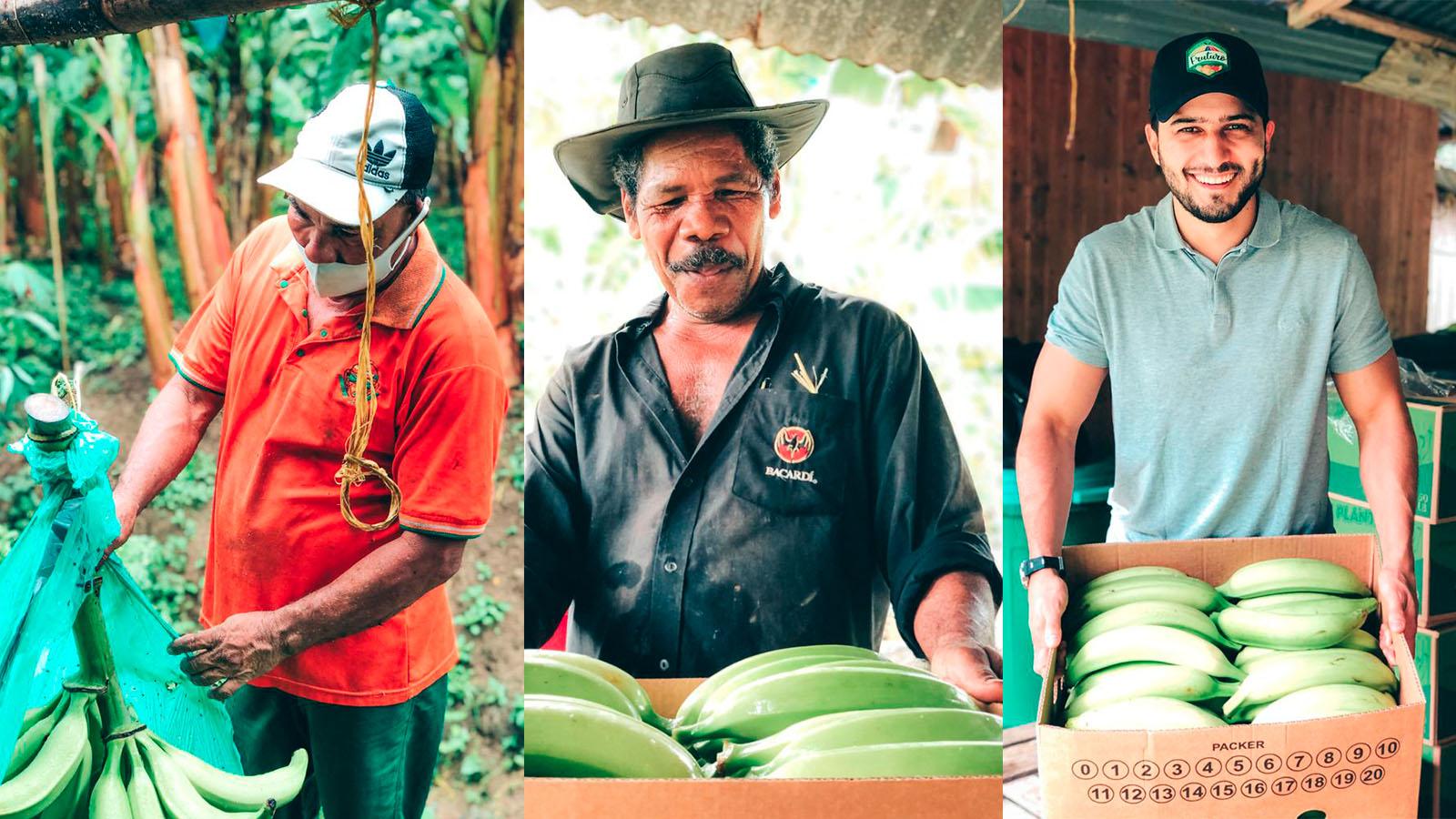 el-certificado-que-abrira-el-mercado-del-platano-de-uraba