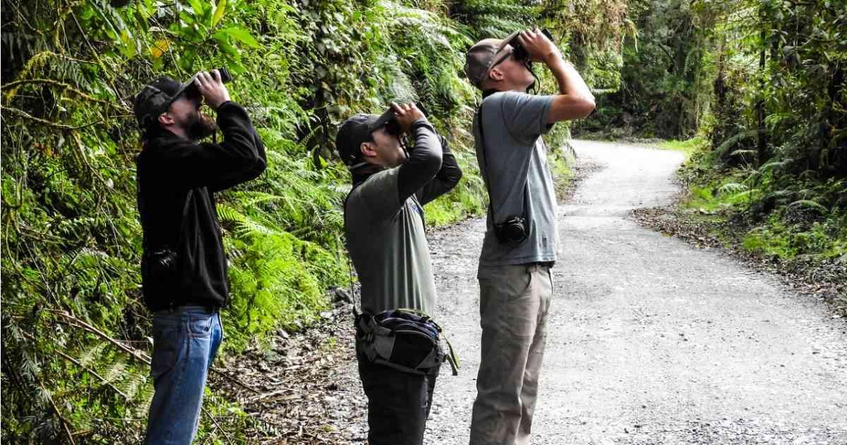 Colombia estrena primera guía para promover el turismo de naturaleza