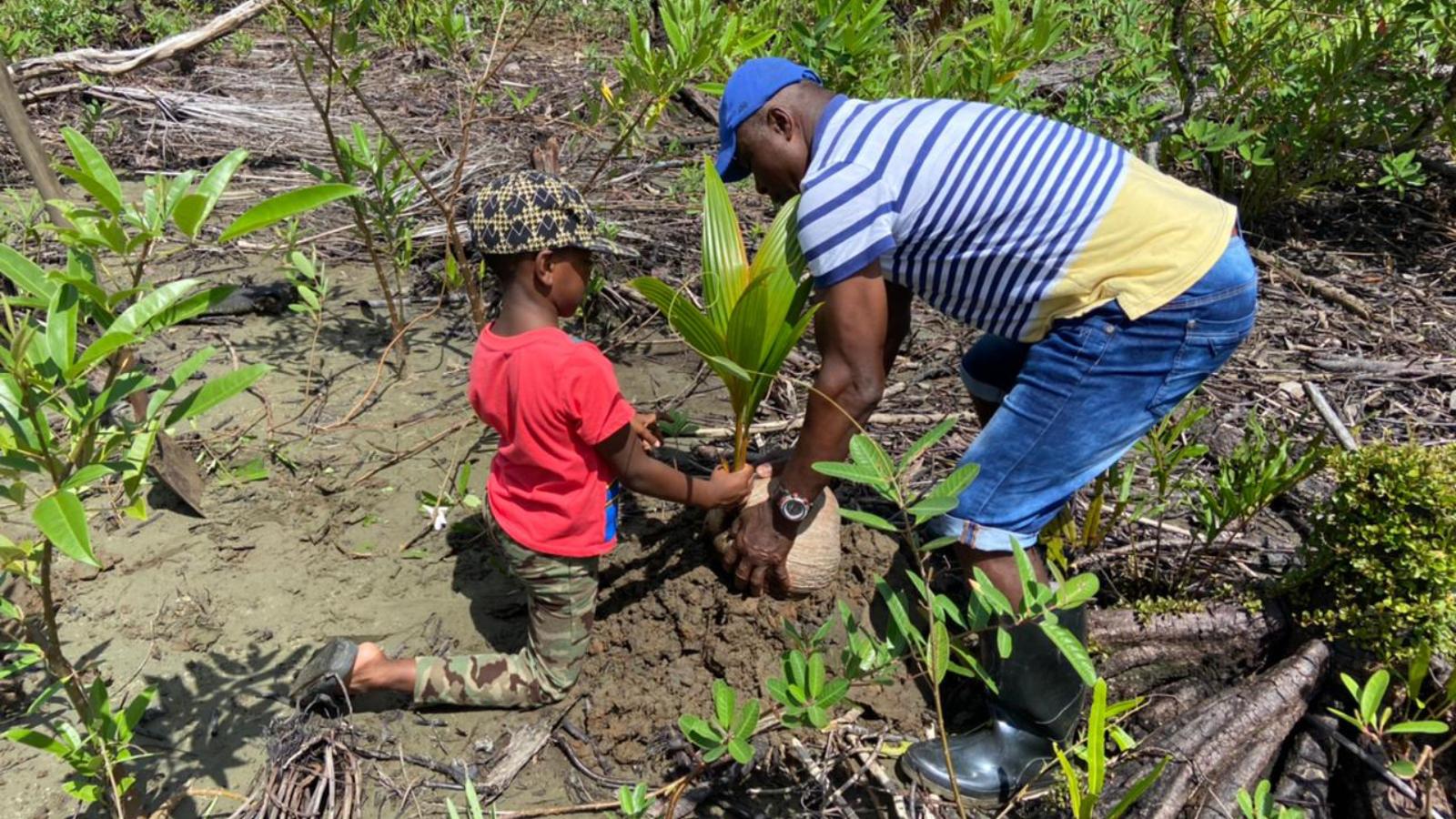 El hombre que resucitó el coco en un rincón de Chocó