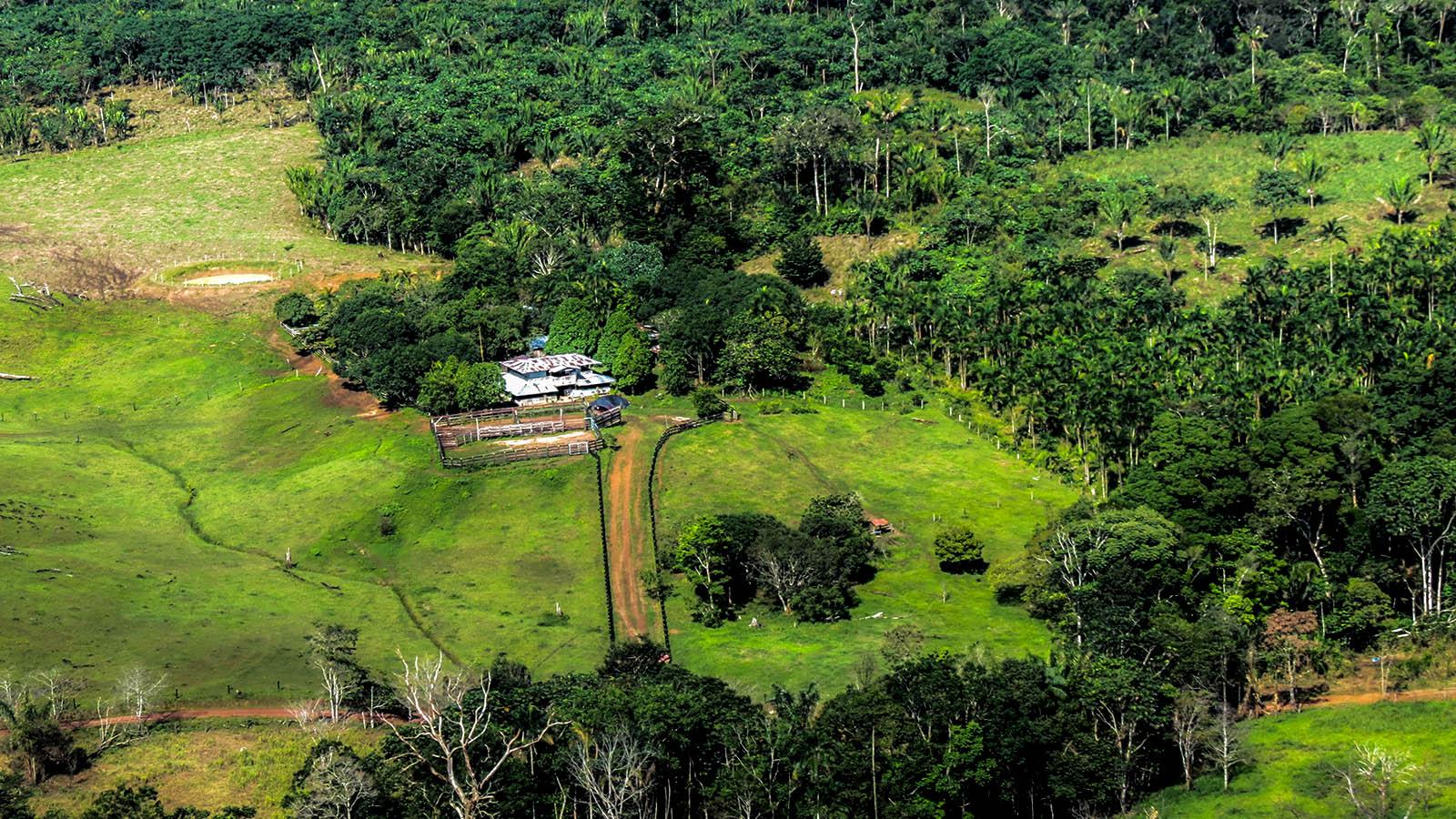 La familia que encontró en el turismo el antídoto a los cultivos ilícitos