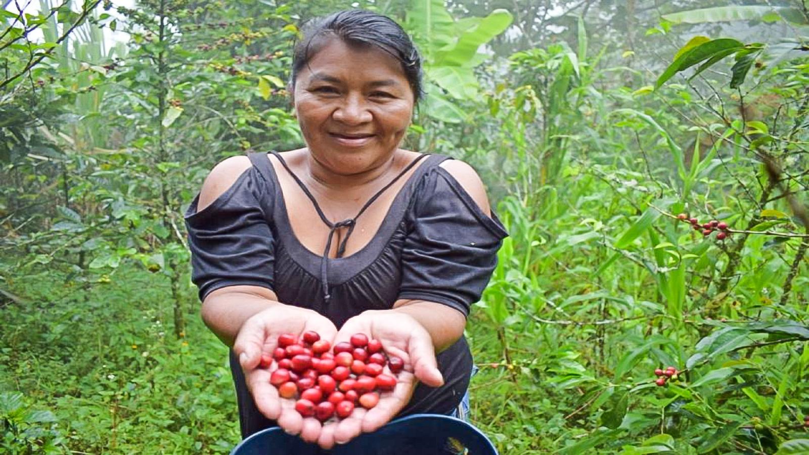 Anuncian $1.500 millones para proyectos de investigación sobre mujer rural