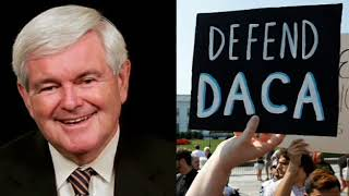 DACA-was-Terrible-Newt-Gingrich-REACTS-to-DACA-termination-by-President-Trump