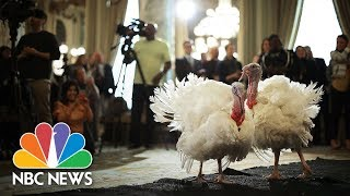 President-Donald-Trump-Leads-Turkey-Pardoning-At-White-House