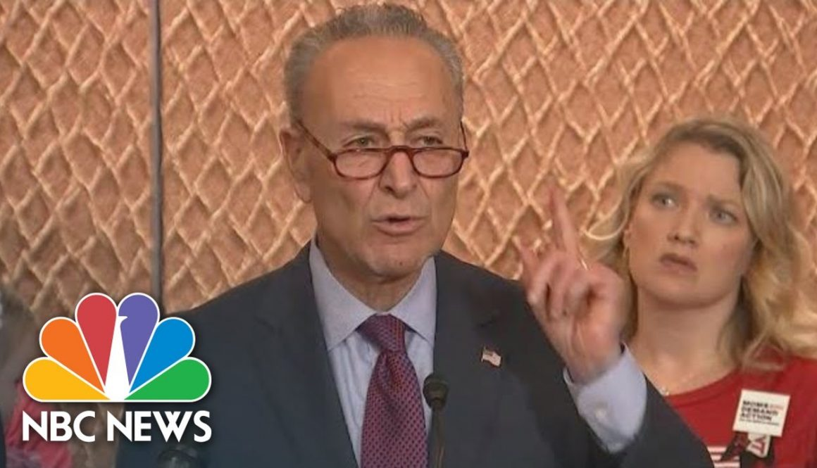 Chuck-Schumer-Slams-President-Donald-Trump-Tweet-On-3D-Gun-Access-As-Hypocrisy