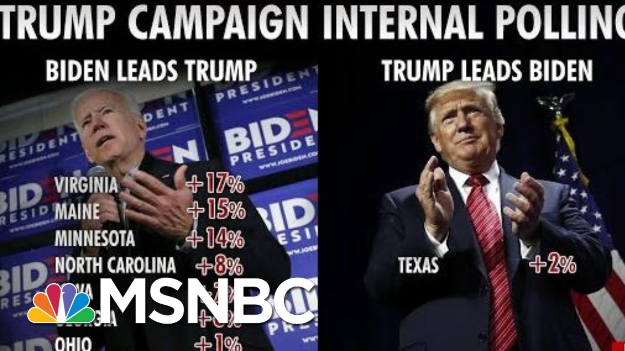 President-Donald-Trump-Campaign-Fires-Pollsters-Over-Bad-Numbers