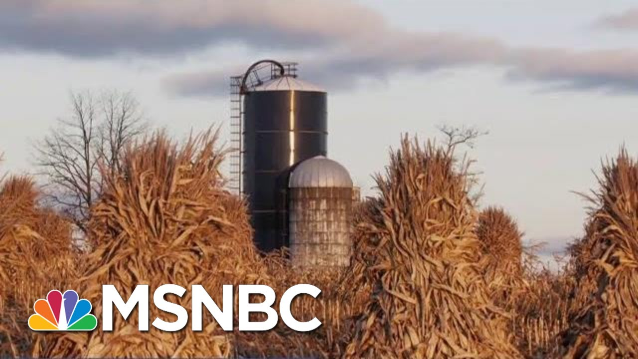 New-Ethanol-Rules-Are-Testing-Farmers-Support-Of-President-Donald-Trump