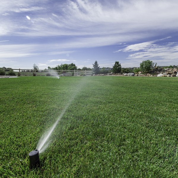 3 Smart Irrigation Systems for Summer